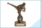 Trophies for Martial Arts